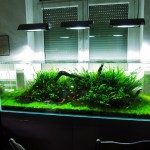 ADA 180cm Optiwhite Nature aquarium